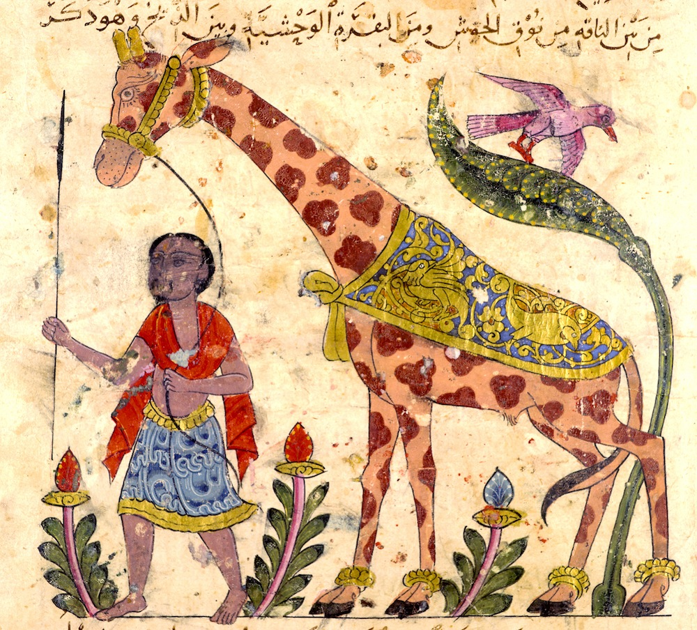 Exotic animals kept by the Caliphs and Sultons