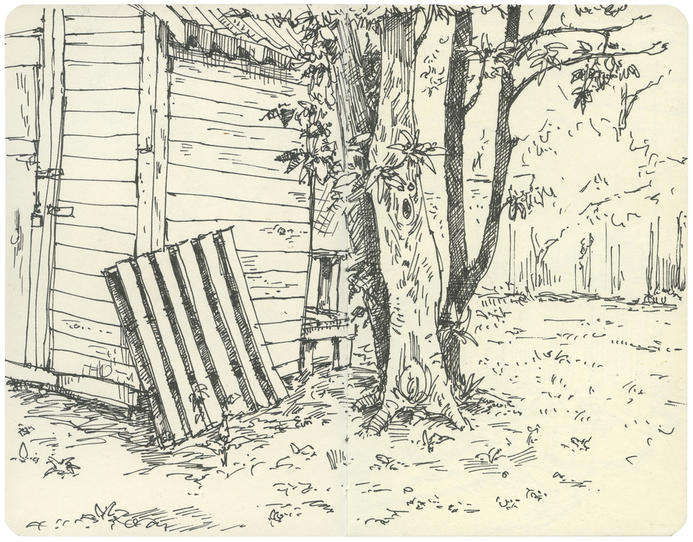 Sketchbook: Backyard Shed