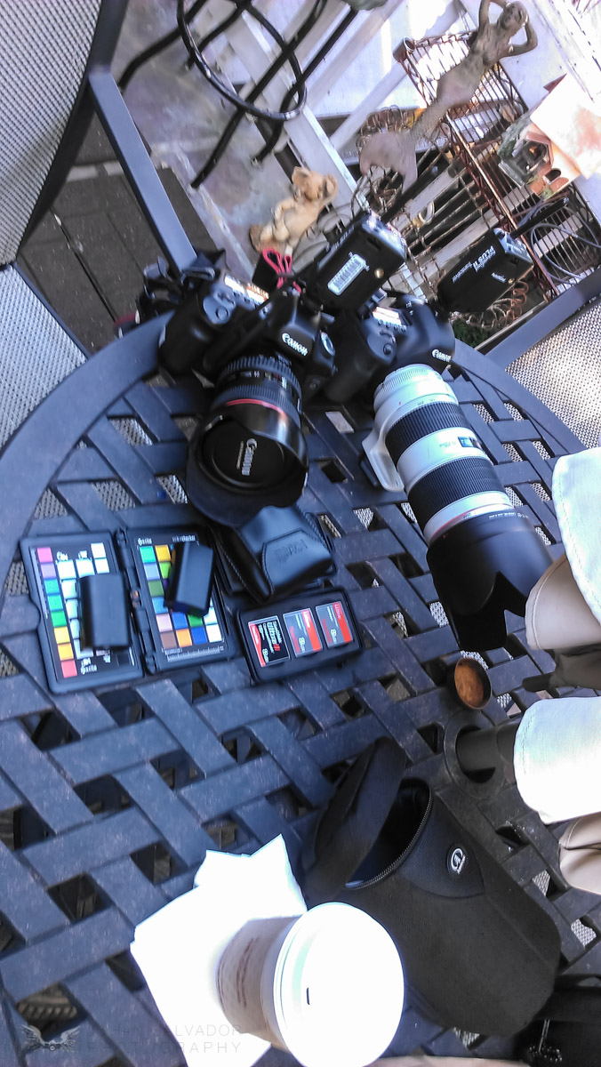 My babies. 5D1 and 5D3 and as always, plenty of extra memory cards.