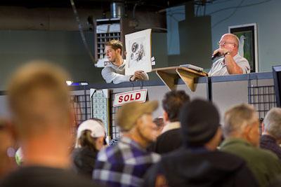 sample-auction-photos-1038.jpg