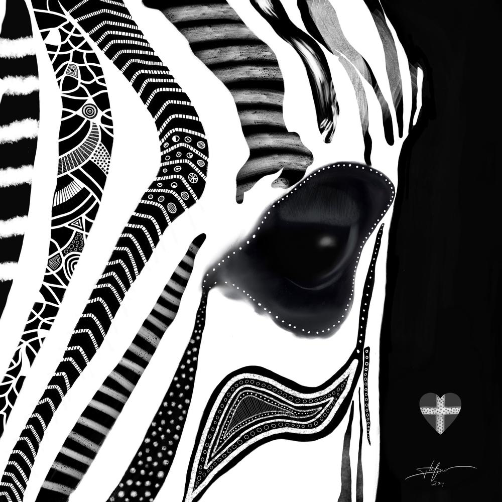 zebraa.jpg
