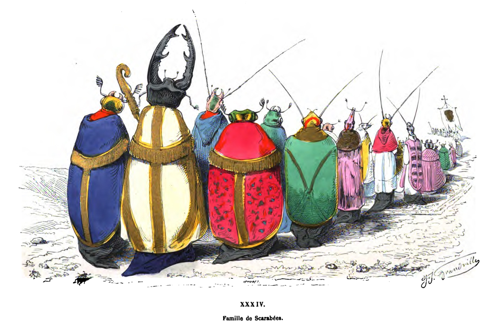 Famille de Scarabées (Family of Beetles) by J.J. Grandville from  Le Metamorphoses du Jour.  PD source:  Wikimedia Commons