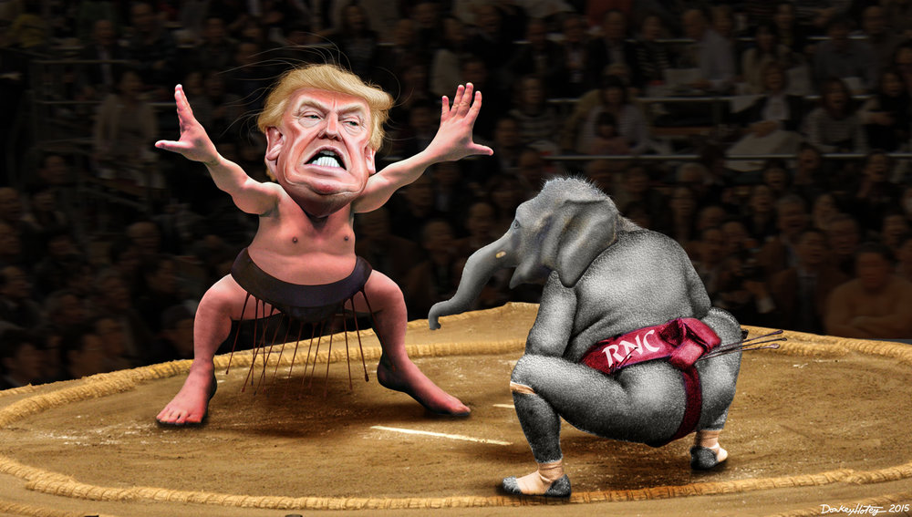 Donald_Trump_Sumo_Main_1920x1080.jpg