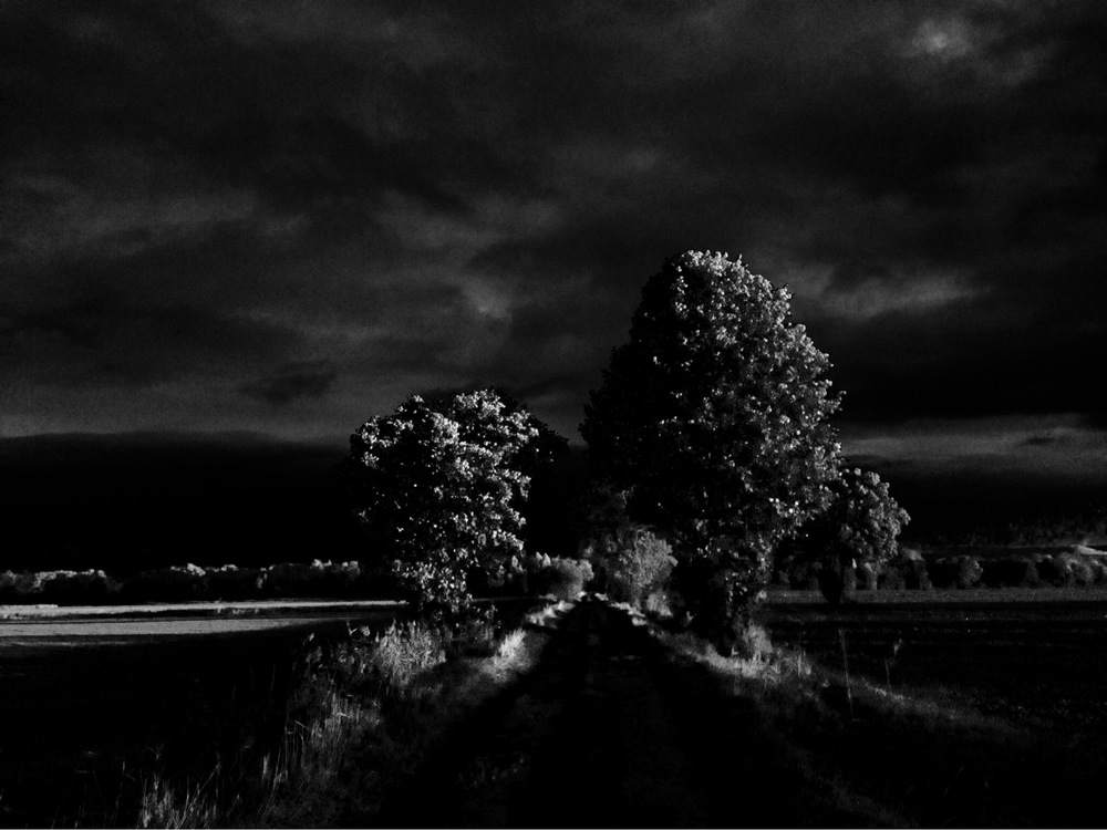 Dark North Yorkshire Landscape