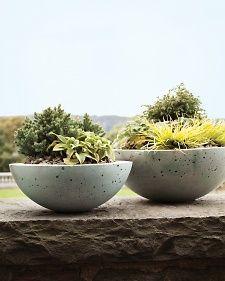 mld105405_0310_bowls  http://ift.tt/1Bfg5Vl