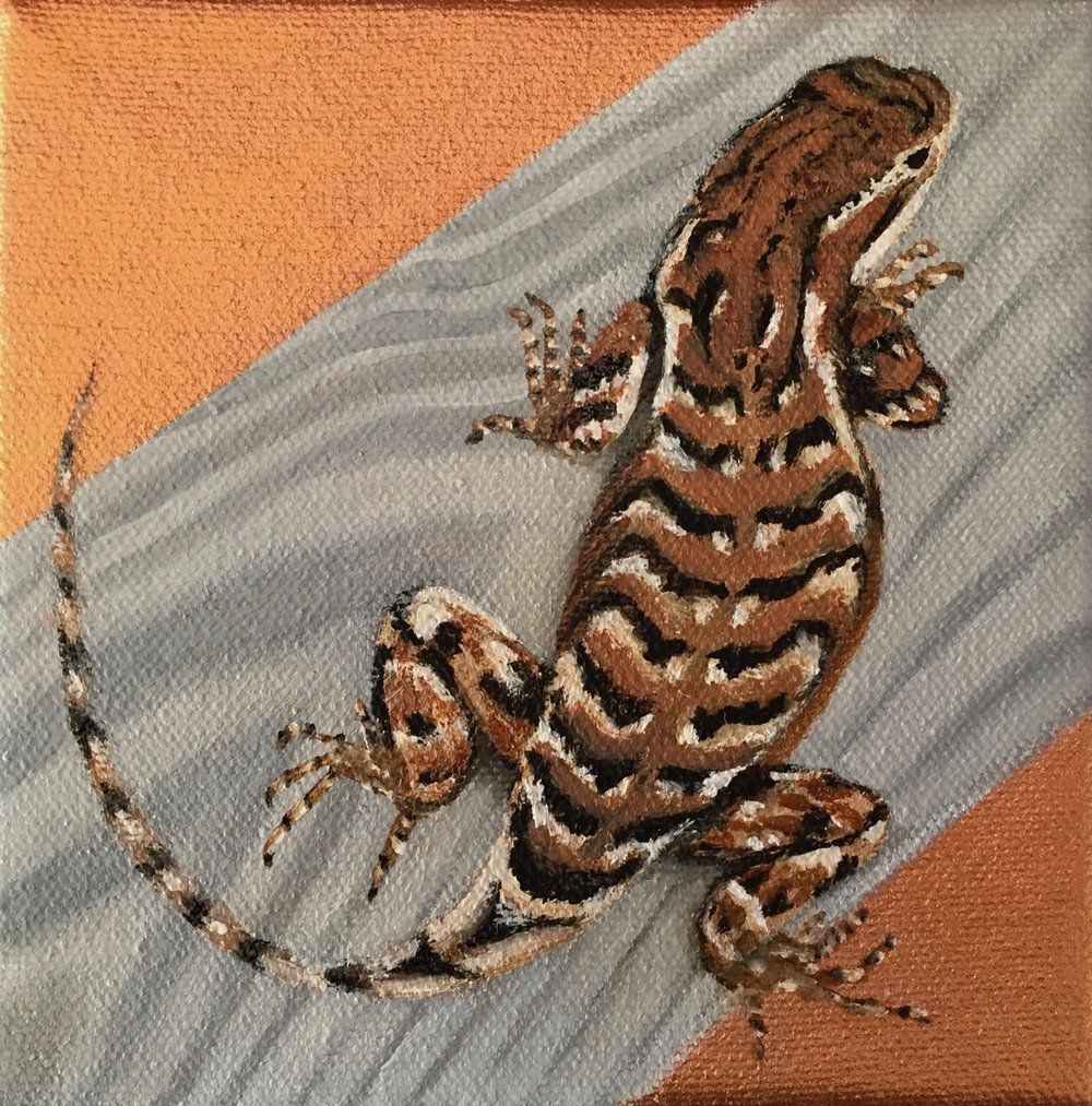 New Mexico Critters: Fence Lizard, SOLD