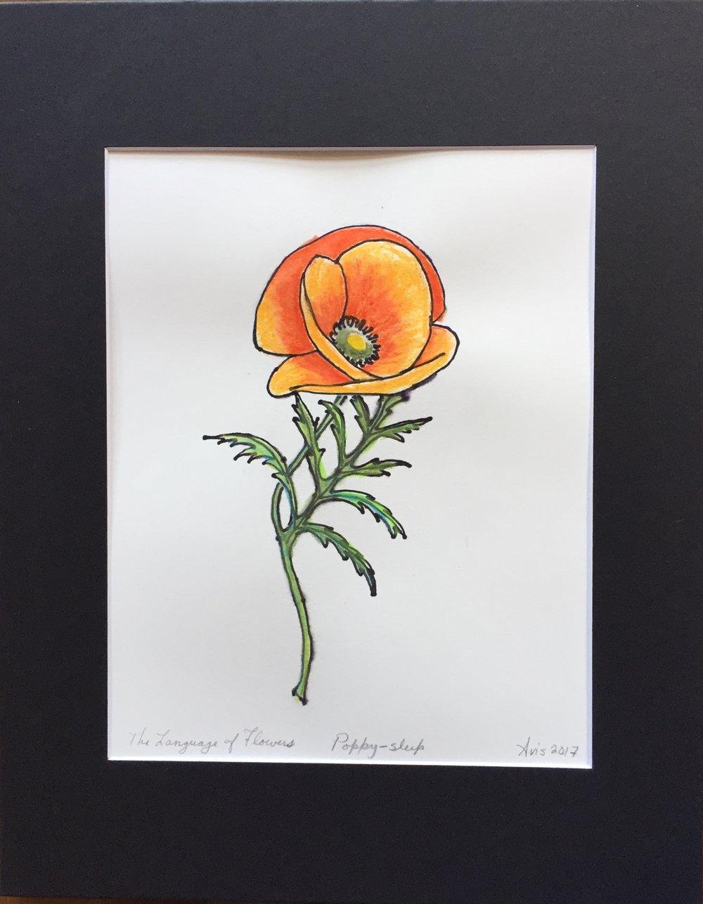 The Language of Flowers, Poppy-Sleep