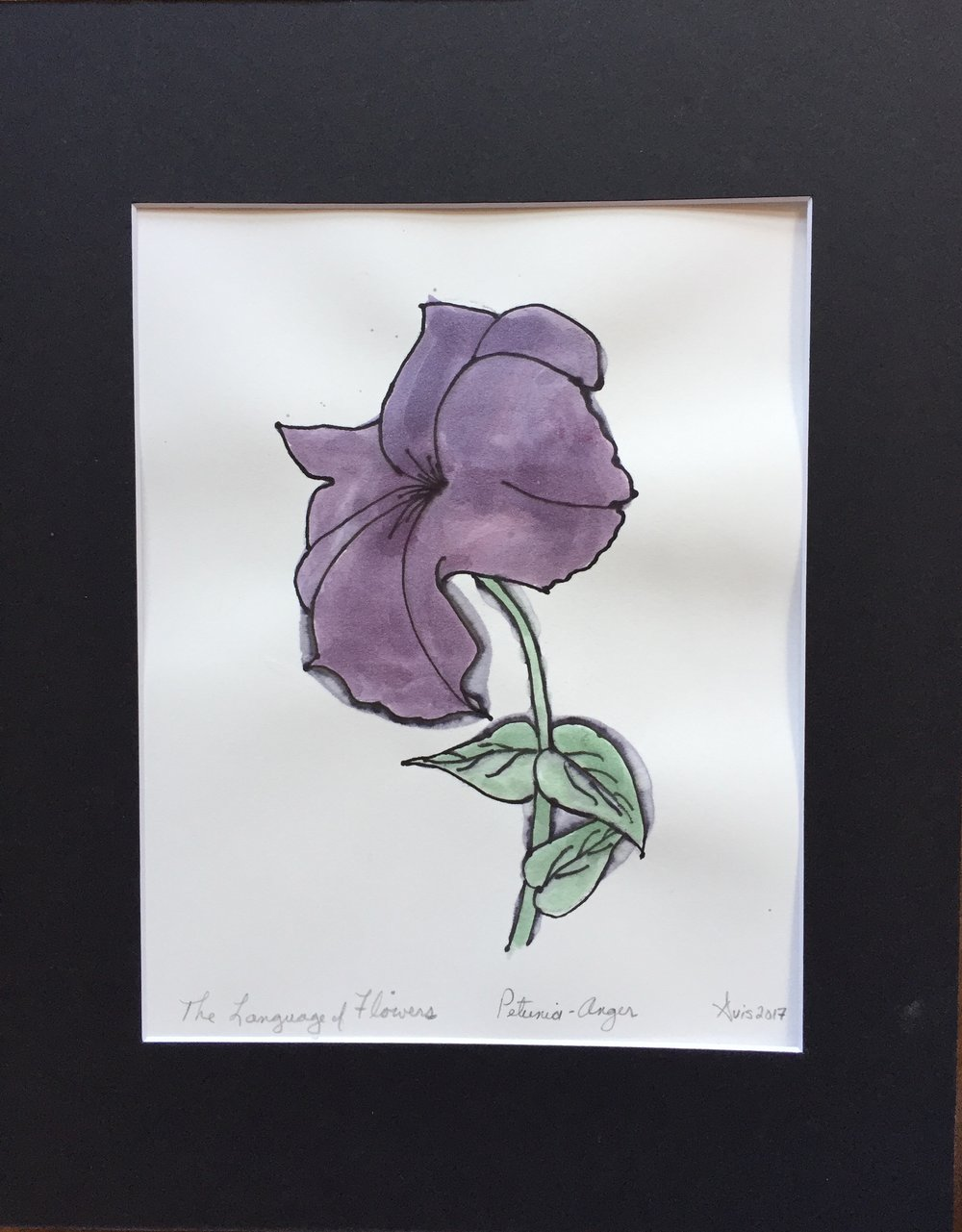 The Language of Flowers, Petunia-Anger.