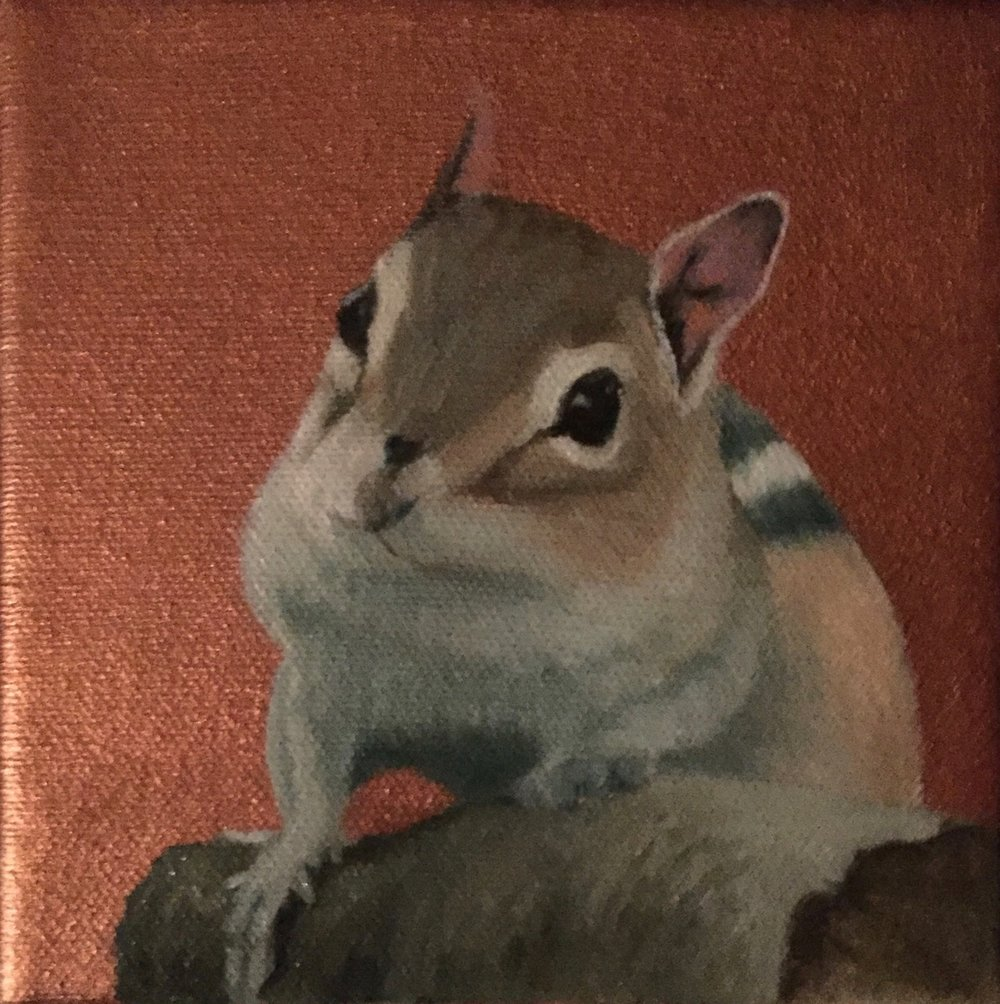 "Chipmunk, oils on canvas, 5"" x 5""."