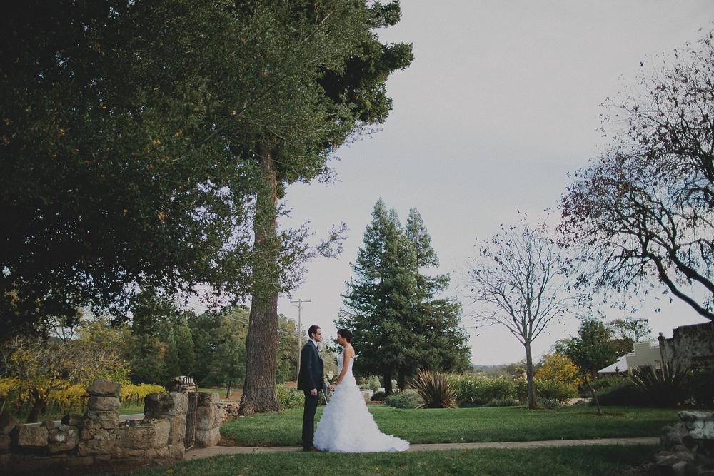 gretchen_gause_healdsburg_wedding_photo
