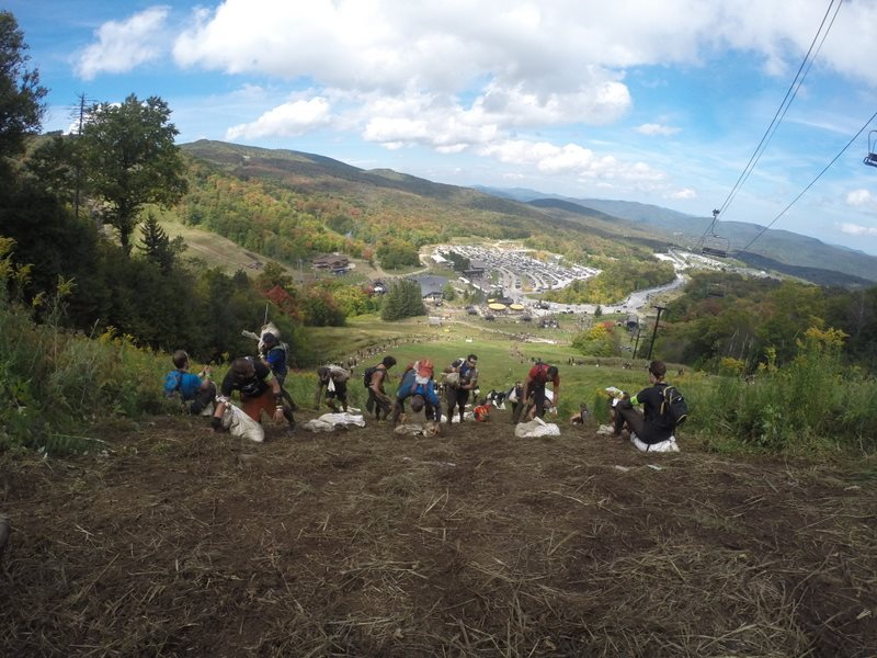 Climbing to the top of the mountain with our bags of sand.  Photo taken by Todd Beattie from Downtown Bootcamp