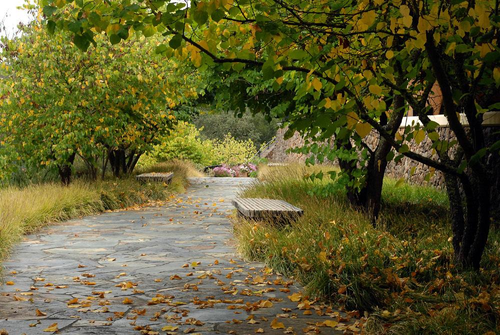 CH 077_2555 Fall Path.jpg