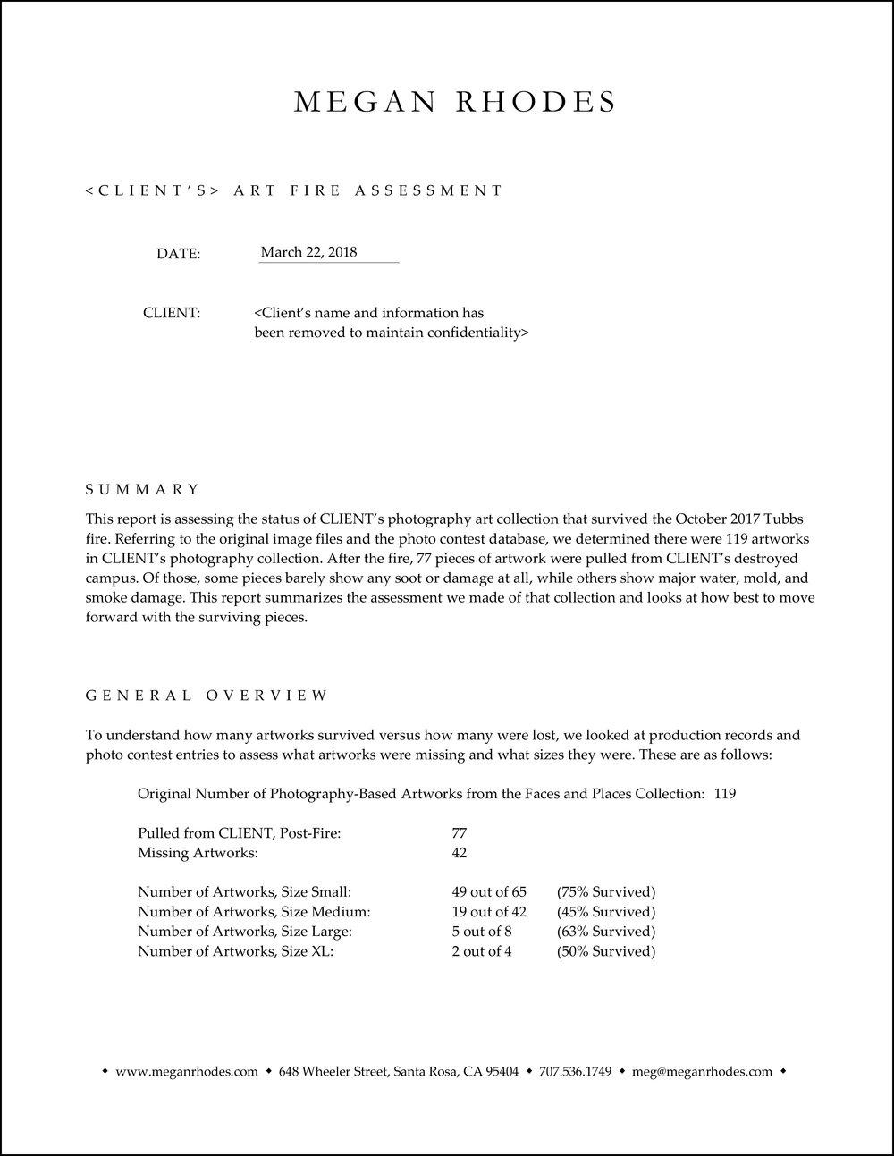 Writing Sample - Corporate Fire Assessment-1.jpg