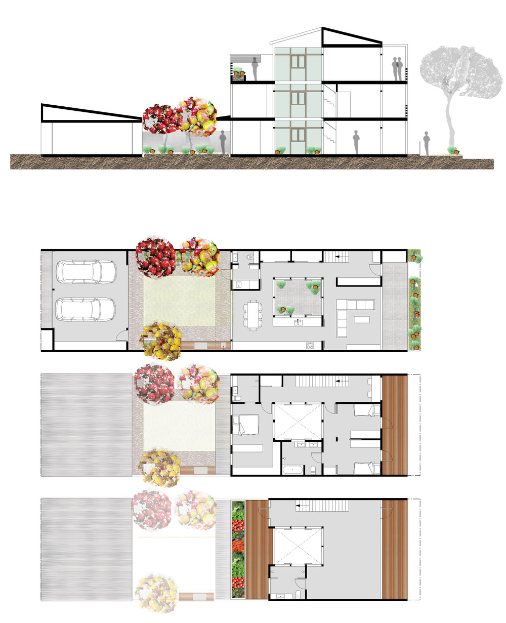 Terrace Plan + Section 8m.jpg