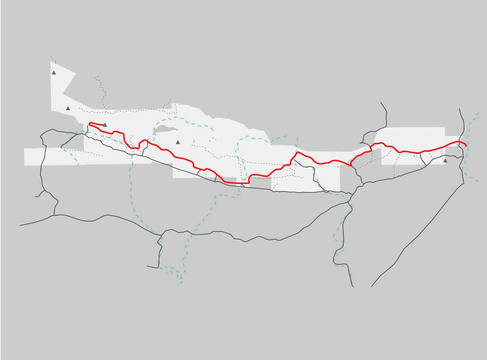 LTP_trail strategy-01.jpg