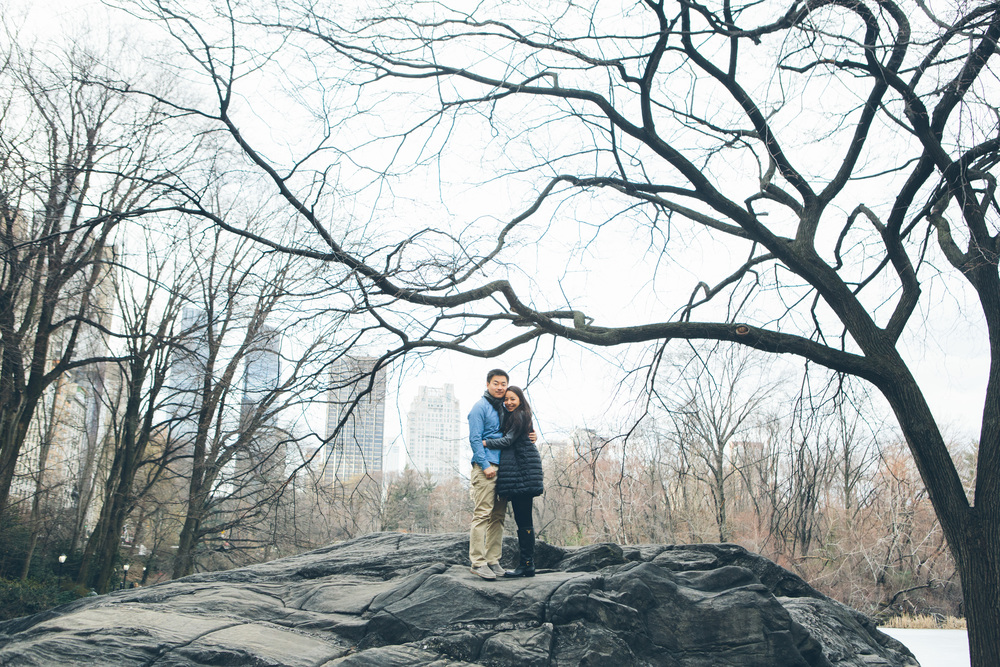 FABIANA-MICHELE-NYC-ENGAGEMENT-SESSION-MET-CYNTHIACHUNG-0036.jpg