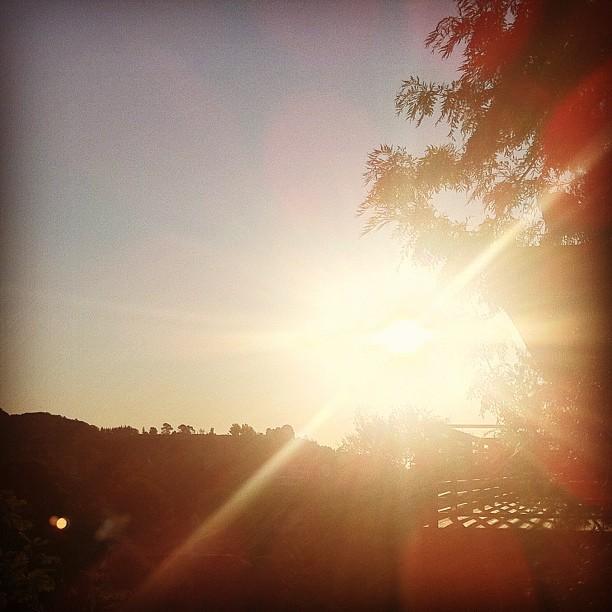 sunrise over griffith park.jpg