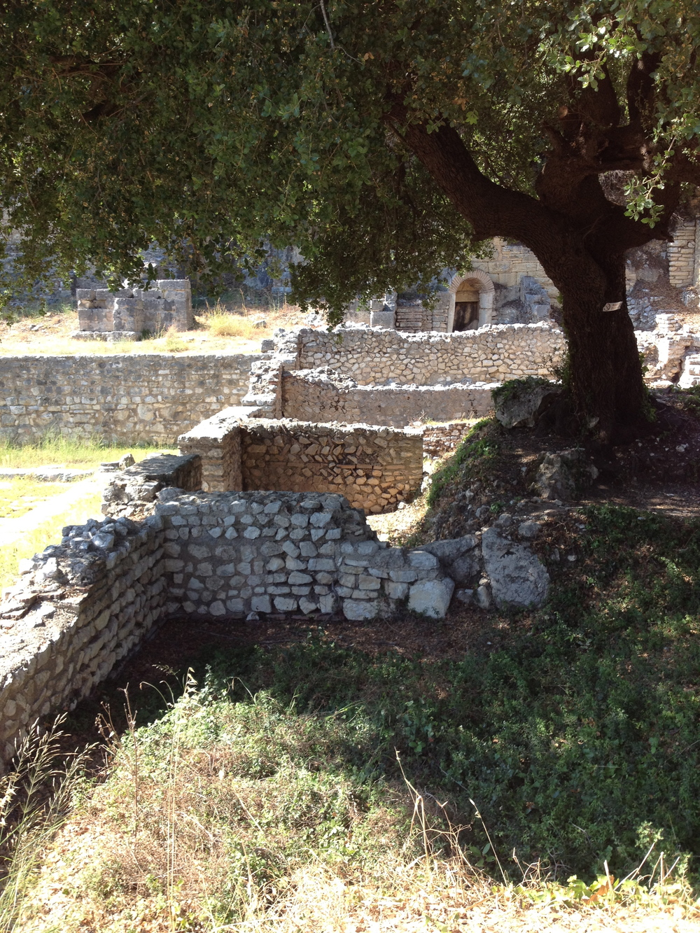 Walls from the ancient forum