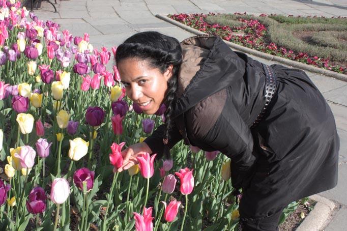 VBisono_Tulips4.jpg