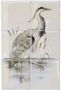 bbirds-herona.jpg
