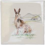 bwild-hare.jpg