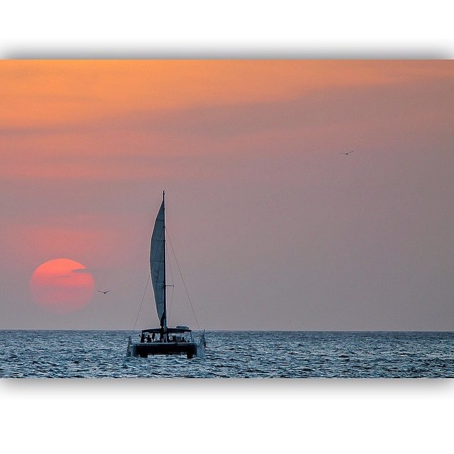 📷 @friminology ☺️ #lovesailing