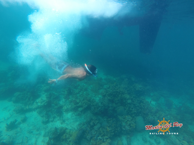playas.del.coco.snorkeling.tours.5.jpg