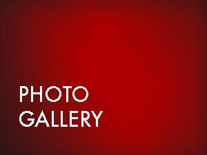 PHOTO GALLERY BUTTON.jpg