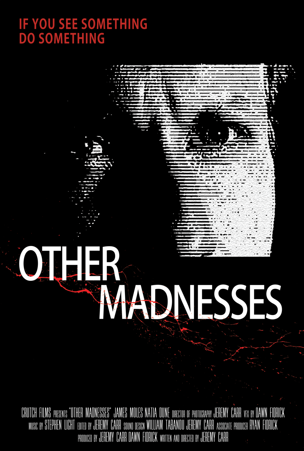 Other_Madnesses_Poster.png