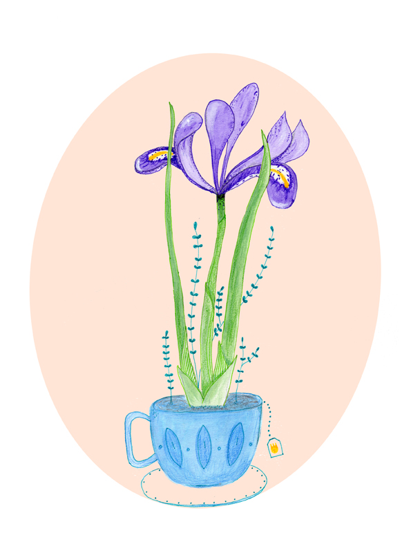 iris in cup with background.jpg