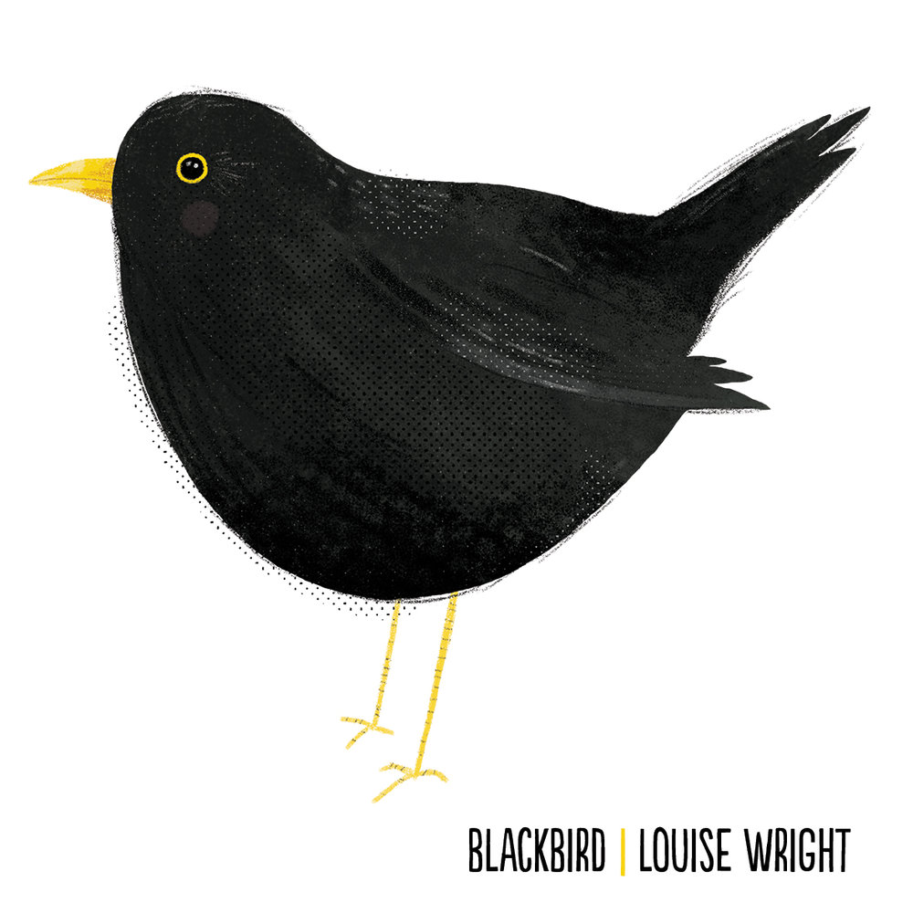 blackbird by louise wright