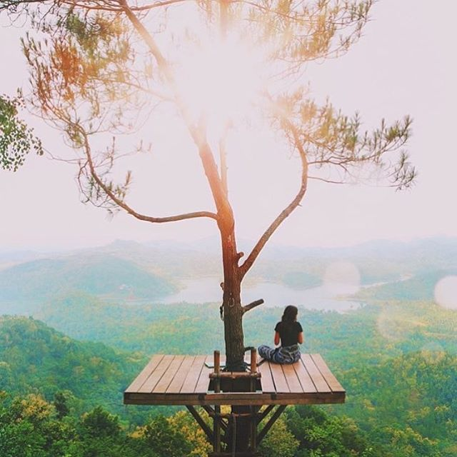 I'll be adding one of these to my rainforest treehouse 🌲 Sunrise ✔️ Sunset ✔️ 📷 @agunghab RG @dametraveler