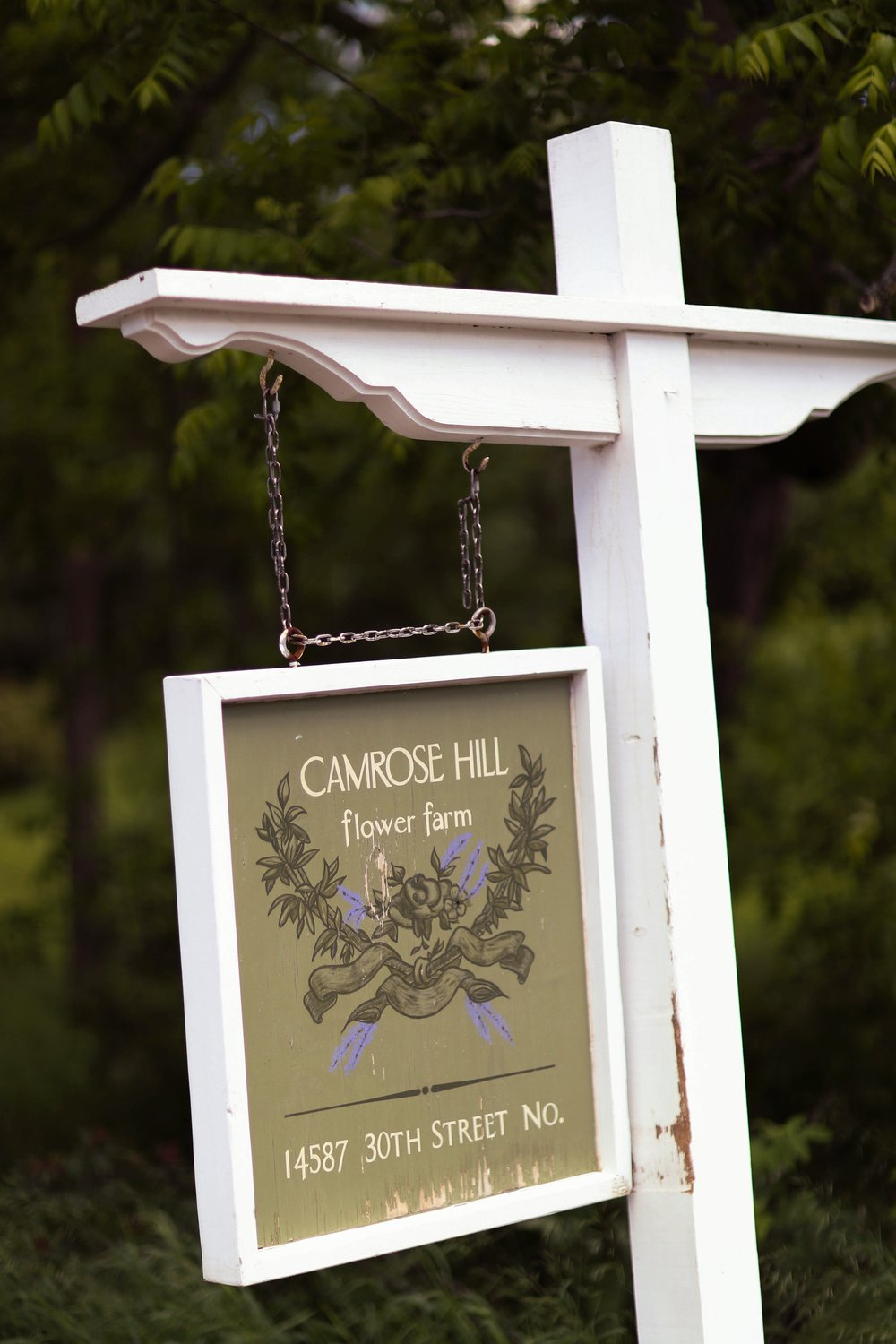 camrose-hill-farm-wedding