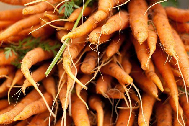 carrot.jpeg