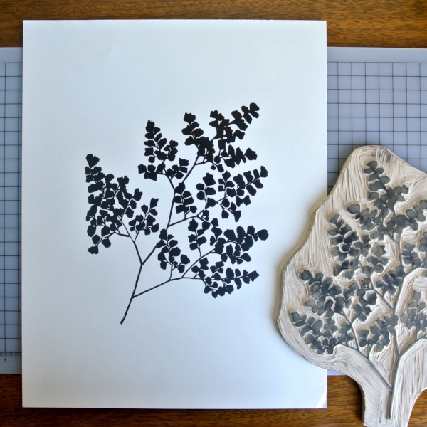 maidenhair fern linocut print by samantha hirst