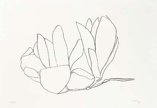 Magnolia (A. 56) by Ellsworth Kelly (source)