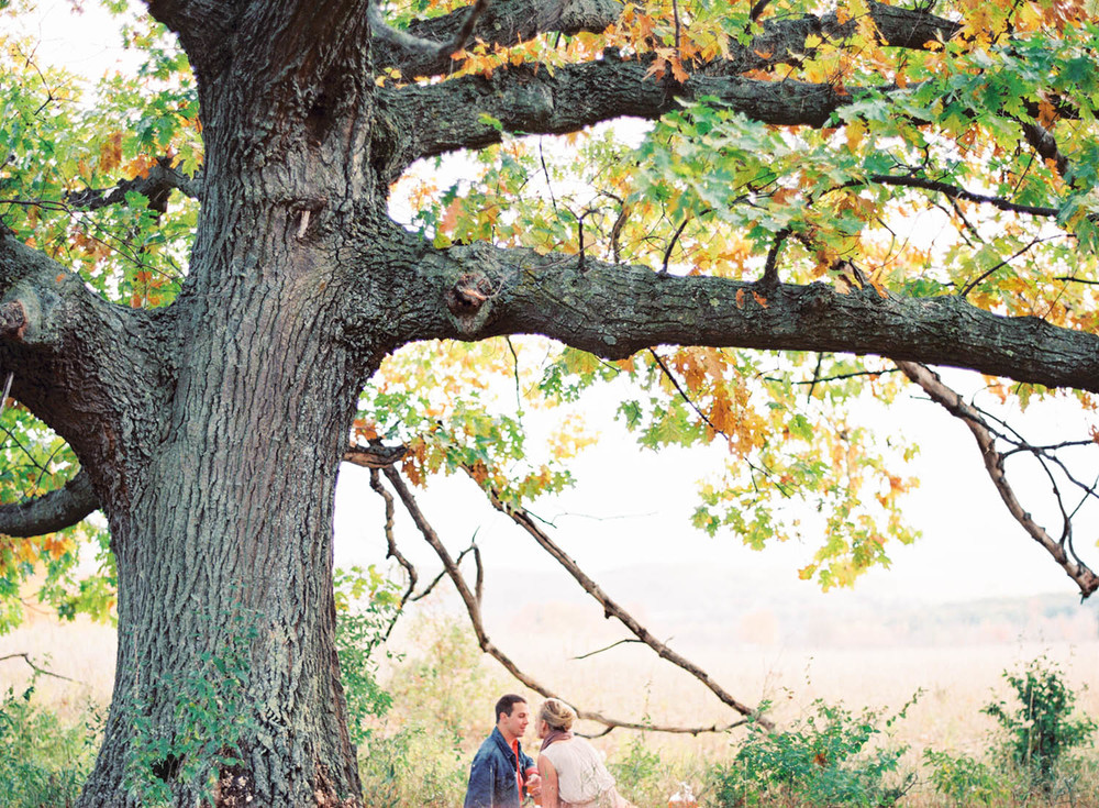 engagement shoot under big tree on picnic blanket