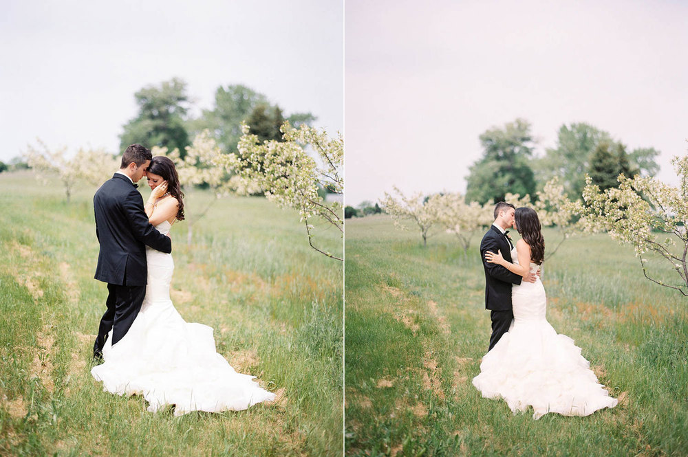 elegant blush michigan vineyard wedding