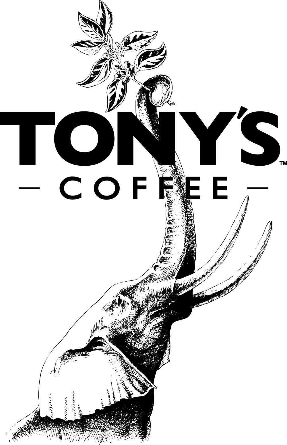 Coffee Donations provided by Tony's Coffee