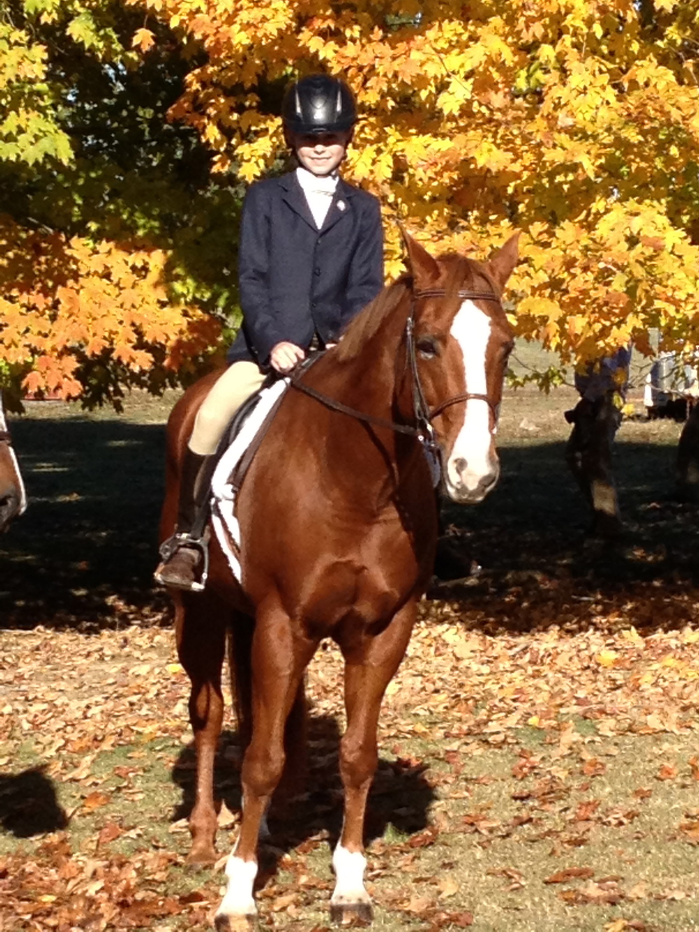 Our Members — West Tennessee Pony Club