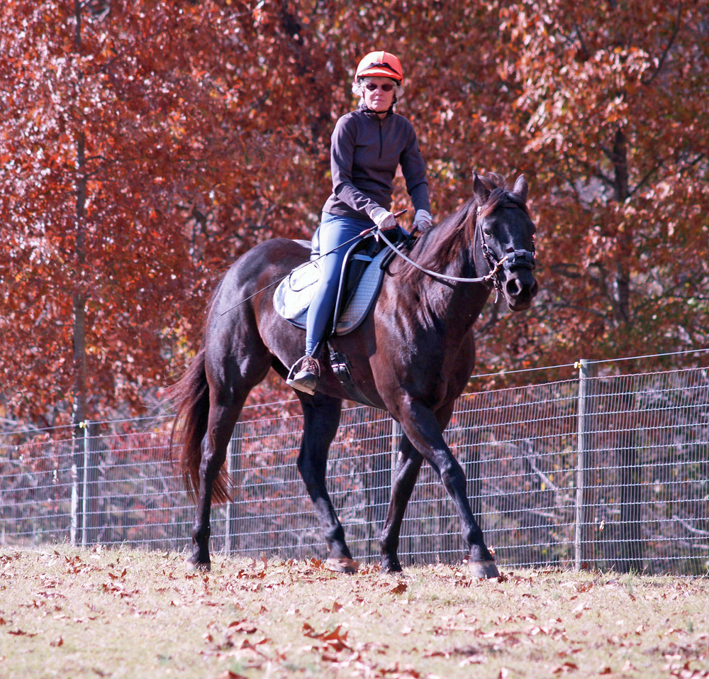 Julie Burrows, still a wonderful horsewoman at 73, enjoys a lovely fall day on Magic.