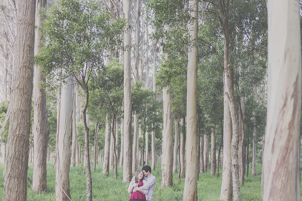 Couple cuddling and laughing on photos shoot in eucalyptus forest in NZ.
