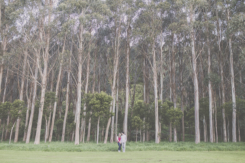 Photo of couple together in front of eucalyptus trees. Photo by jenny Siaosi.
