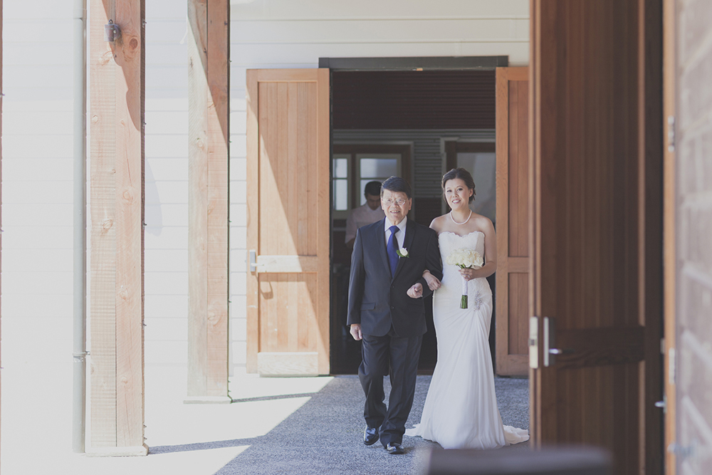 Wellington-wedding-photography_037.JPG