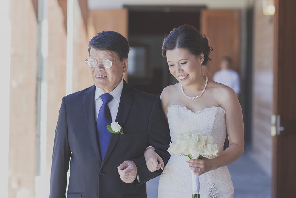 Wellington-wedding-photography_038.JPG
