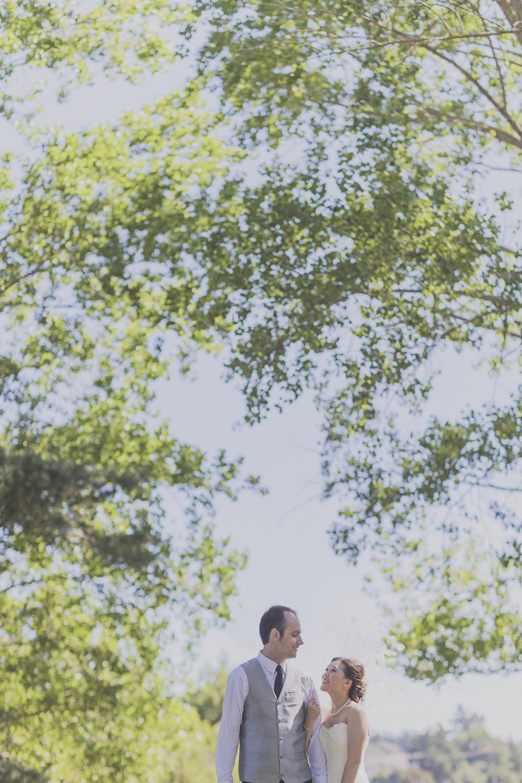 Wellington-wedding-photography_069.JPG