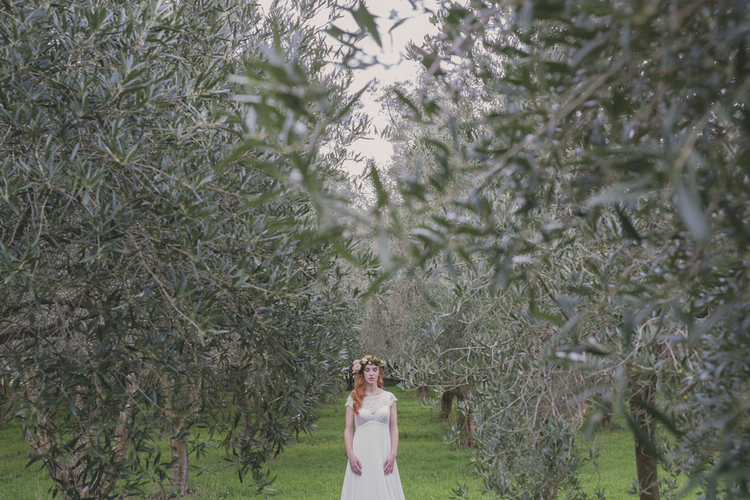 Olive+Grove+Wedding.jpg