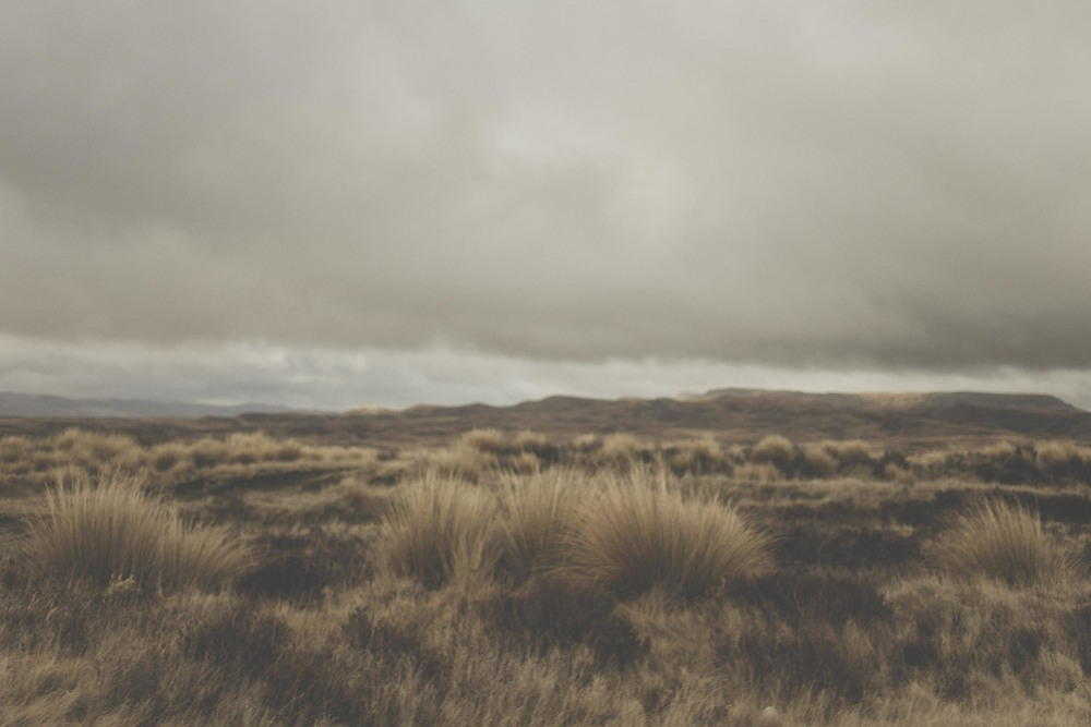 Landscape, road trip photo of the Desert Road, North Island of New Zealand. Image by Jenny Siaosi.