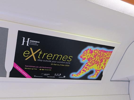 CChorus_Extremes_Traincard.png
