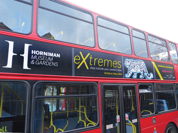 CChorus_Extremes_Buses.png